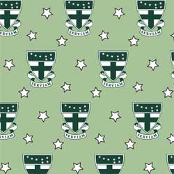 Vineyard Vines Green Pattern